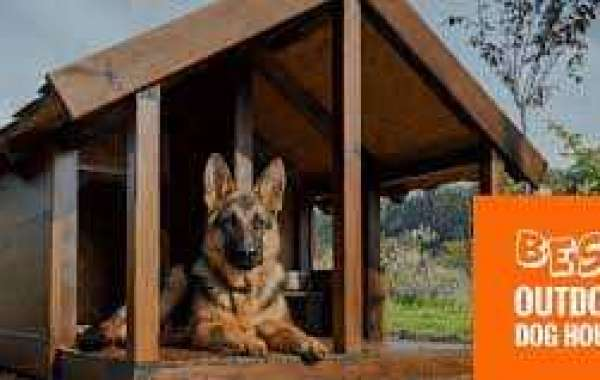 Indoor Dog Houses For Your Dog