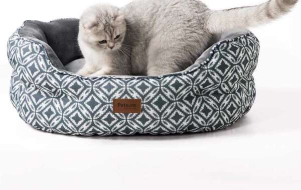 A Few Heated Cat Beds You Could Buy