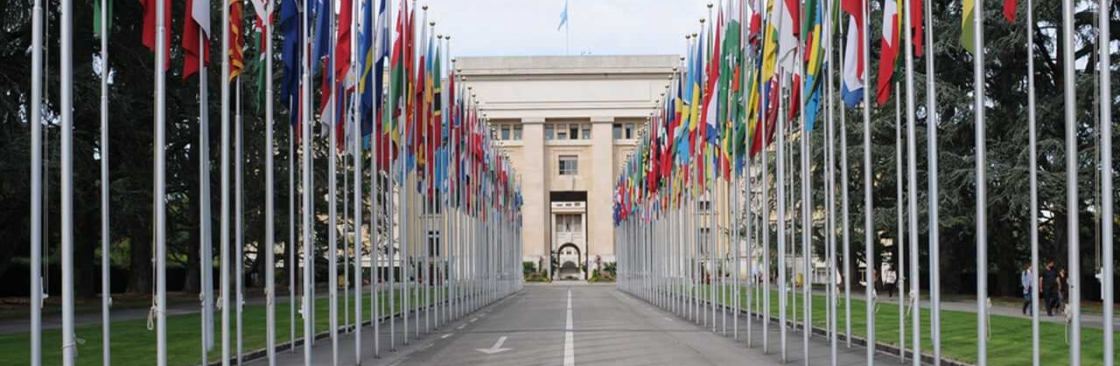 Geneva School of Diplomacy and International Relations Cover Image
